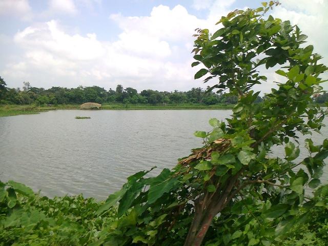 Dr-Ananda-M-Kar0303.jpg